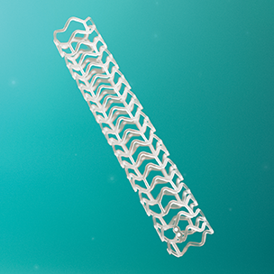 Absorb GT1 Bioresorbable Vascular Scaffold System